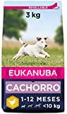 Eukanuba Alimento seco para cachorros de raza pequeña, rico en pollo fresco 3 kg