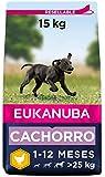 Eukanuba Alimento seco para cachorros de raza grande, rico en pollo fresco 15 kg