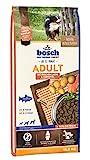 bosch HPC Adult con salmón fresco y patata | Alimento seco para perros adultos de todas las razas |...