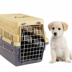 Transportín para perros